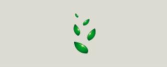 緑色の種のイメージ
